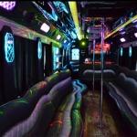 Atlanta Party Bus LLC - 30 passenger party bu